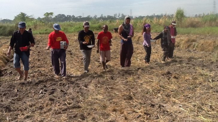 Peasant groups slam redbaiting of Negros' land cultivation