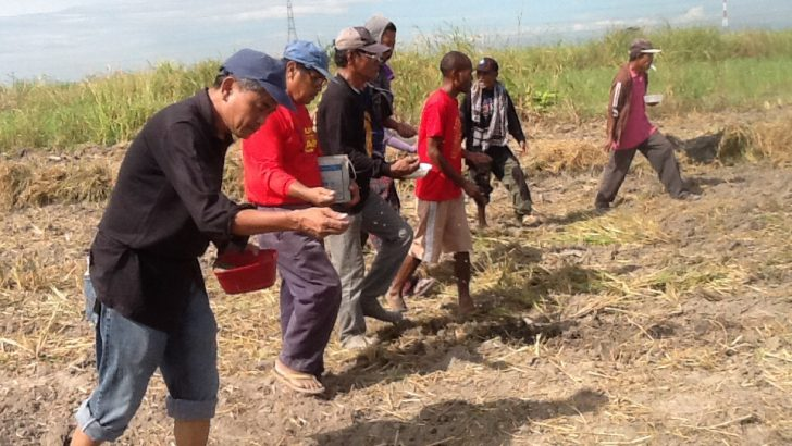 #RememberLuisita| Land cultivation campaign showcases people's unity