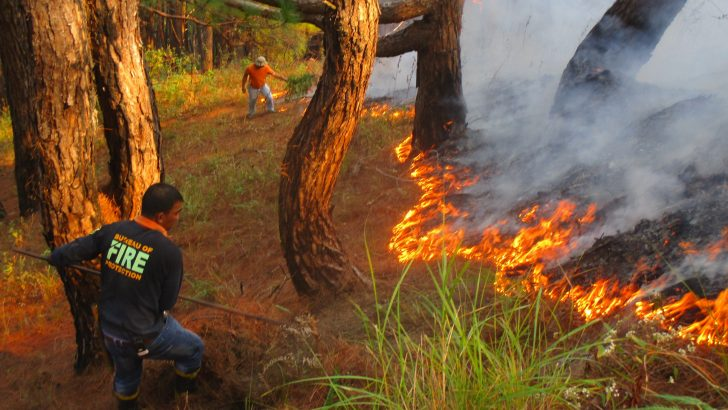 More firetrucks needed to suppress forest fires in Benguet – solon