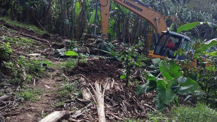 6 farmers arrested for harvesting own crops, hundreds others evicted due to land grabbing
